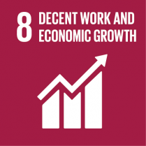 8 Decent Work and Economic Growth